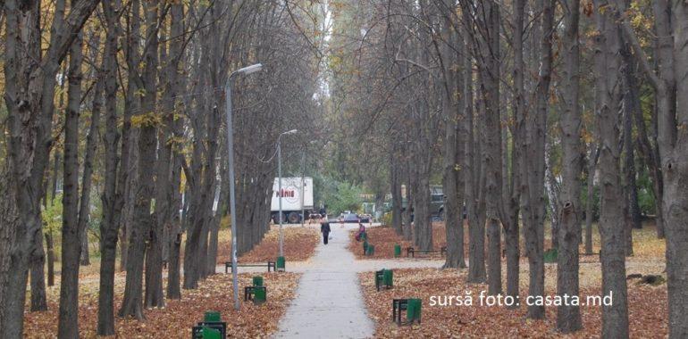 """Cum riscă să fie utilizat defectuos ajutorul financiar al României pentru reabilitarea parcului """"Alunelul"""""""