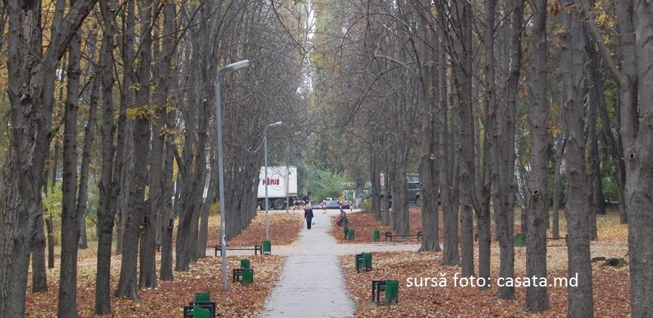 Финансовую помощь, выделенную Румынией на модернизацию Парка «Alunelul», могут использовать с нарушениями