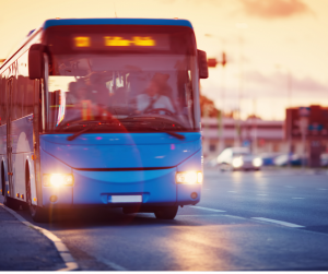 Municipiul Chișinău renovează parcul urban cu autobuze uzate